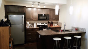 Executive one bedroom suite! Utilities included!