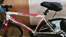Vertigo Picadilly bicycle