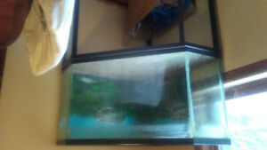 Large 80 gallon corner fish tank with stand