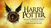 Harry Potter Party to Celebrate Harry Potter & the Cursed Child