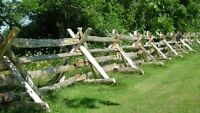 HORSE BOARDING AVAILABLE - 1 BOX STALL & PASTURE