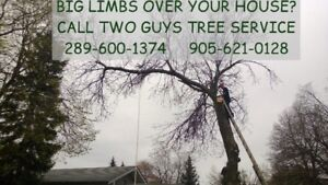 Tree Service Tree Removal Tree Trimming by Two Guys Tree Service