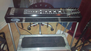 STEEL GUITAR PLAYER WANTED