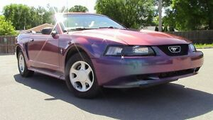 2000 Ford Mustang Convertible CHAMELEON PAINT