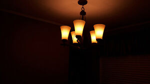 For sale Bathroom Fixture, Dinning room ceiling fixture and hall
