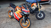 Honda cbr600rr repsol Yarloop Harvey Area Preview