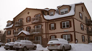 CONDO FOR RENT- MONT TREMBLANT, & other areas