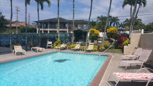 Newly Renovated 1BD condo on Maui (Dec5-18) Walk to beach