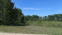 A Beautiful  Acreage to Build Your Dream Home is Available