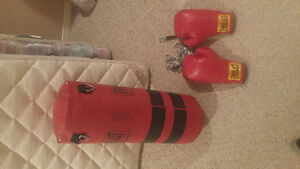 Youth Punching Bag and Gloves