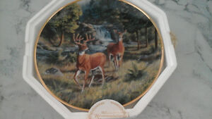 collector plate,summer sojurn