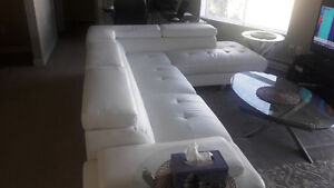 Sofa & Love-seat - Nearly New in Perfect Condition