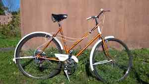 Rare Vintage Raleigh Brooks Womans 5 Spd.