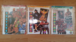 WWF Wrestling Poster Magazines and WWF Wrestling Comic Books