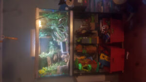90 gallon terrarium PRICE REDUCED!
