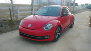 Beautiful VW Beetle for sale!! PRICE REDUCED!!