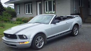 MUSTANG CONVERTIBLE 2005  IMPECABLE