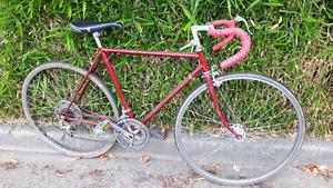"21""Old Mens' NISHIKI Road Bike (tuned up/10speed/fun to ride)"
