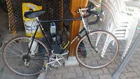 1984 Apollo Super Sport Bike