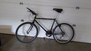 Bianchi Forte Bicycle