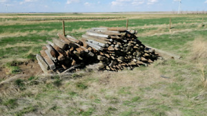 Fencing posts, used.