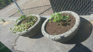 Aggregate Outdoor Flower Pots for Sale