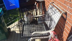 Collapsible Pet Crate with liner