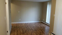 Available for rent immediately 1 Bedroom Apartment