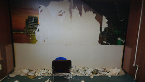 Experienced & Professional Painting Team Residential+Commercial Kingston Kingston Area image 6