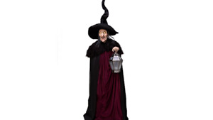 Wanted: Life Size Animated Witch Of Stolen Souls Halloween Prop!