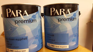 Paint x 2 gallons