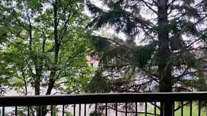Beautiful 2 Bdrm Lakeview