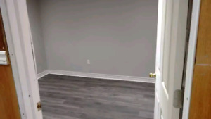 Basement for rent with free parking and free Wi-Fi