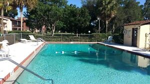 Ocala furnished condo