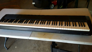 Casio CDP-120 88 key keyboard with stand