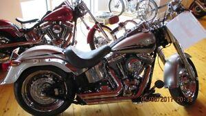 2009 Harley-Davidson FLSTF