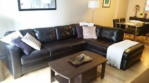 Engineered Leather Couch - Divan