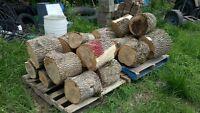 Seasoned Ash. Frene seche. Firewood, bois de foyer