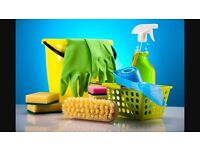 Cleaning end of lease or daily domestic