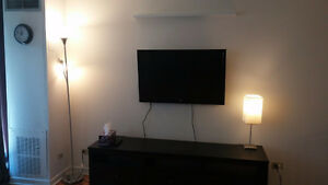 Beautiful & very clean furnished 1-bedroom in downtown for Sept