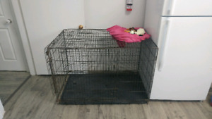 XL folding dog crate