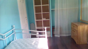 Female room for rent ( Along Oxford St. East, Fanshawe College )