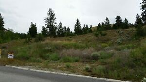 Almost 1/2 Acre Lot! All Underground Service! Sutunning Views!