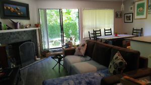 Student Roommate Wanted! Jan 1