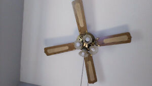 Ceiling Fans and Light