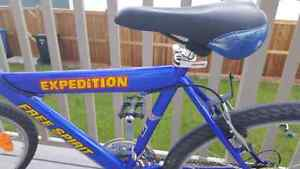 Expedition Bike For Sale