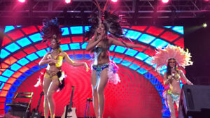 Live Entertainment and Dancers For Your Next Event!