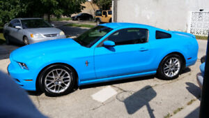 2013 Ford Mustang classic grabber blue!