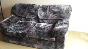 pull-out sofa love seat