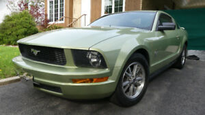 Mustang 2005 6 cyl 4.0
